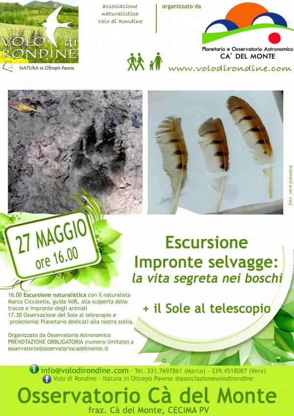 27 maggio, Impronte Selvagge: la vita nascosta dei boschi